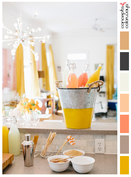 citrus toned party with color palette