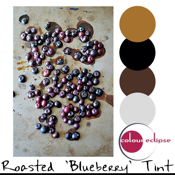 balsamic roasted blueberries with color palette