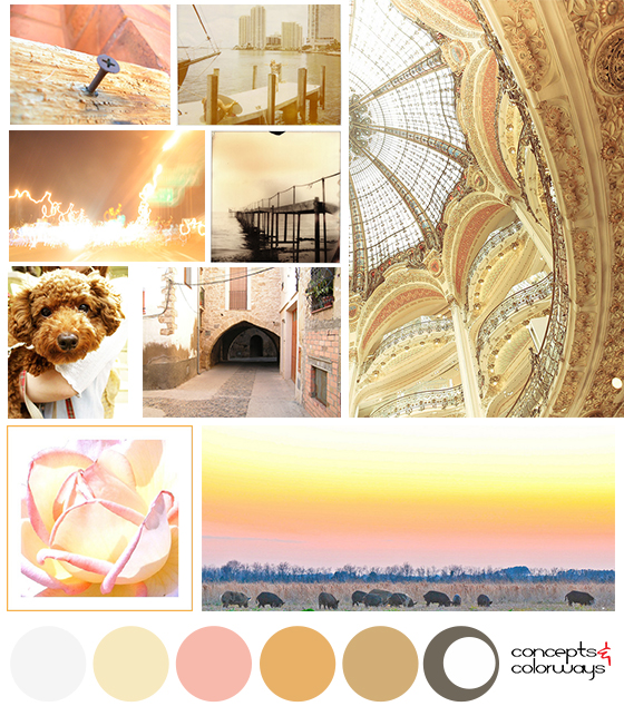 blushing neutrals mood board
