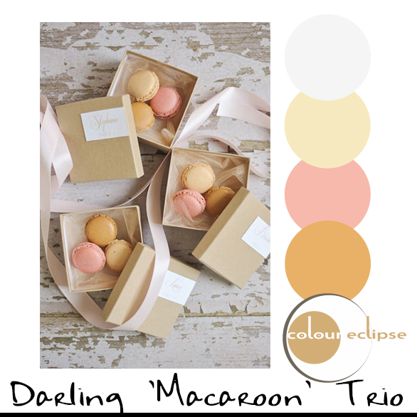 macaroon wedding favor boxes with color palette