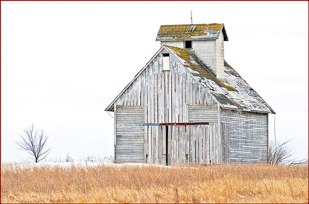 weathered barn in golden field during after snow