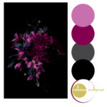magenta and black color palette