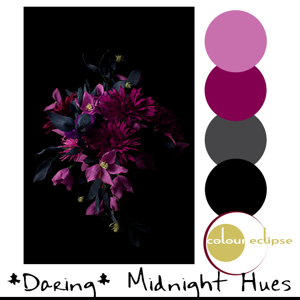 black and magenta color palette