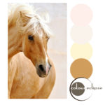 golden brown palomino horse