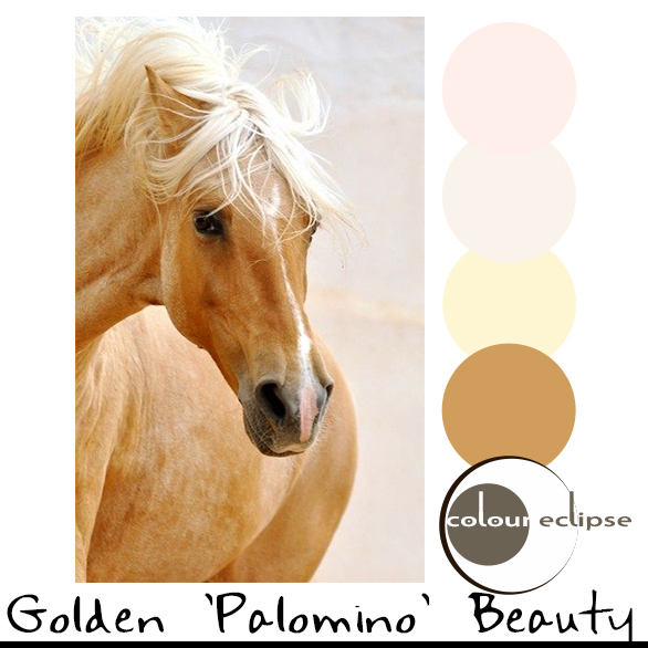 golden brown palomino horse with color palette