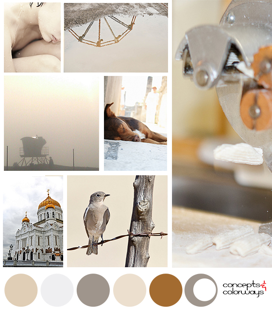 subtle neutrals mood board with color palette