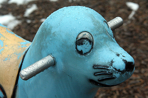 turquoise seal playground toy