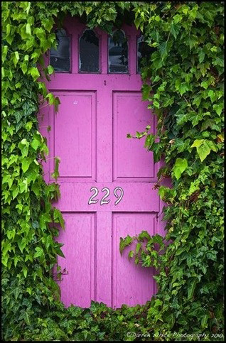 magenta door surrounded in ivy
