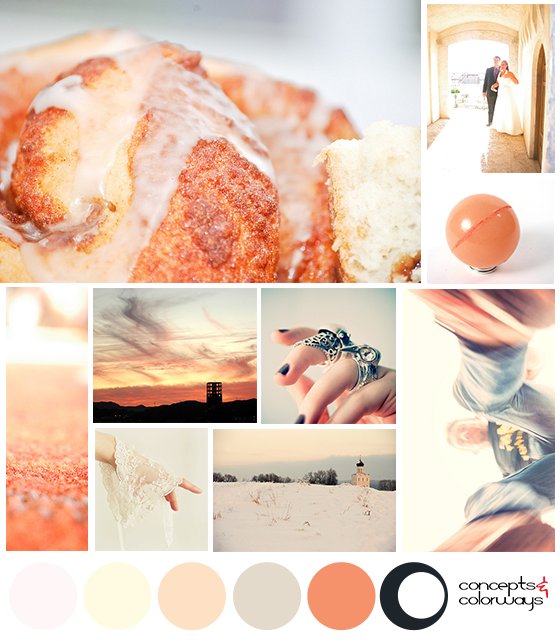 peach nuance mood board with color palette