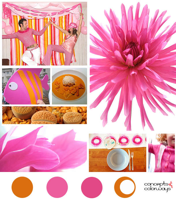 rust and magenta mood board