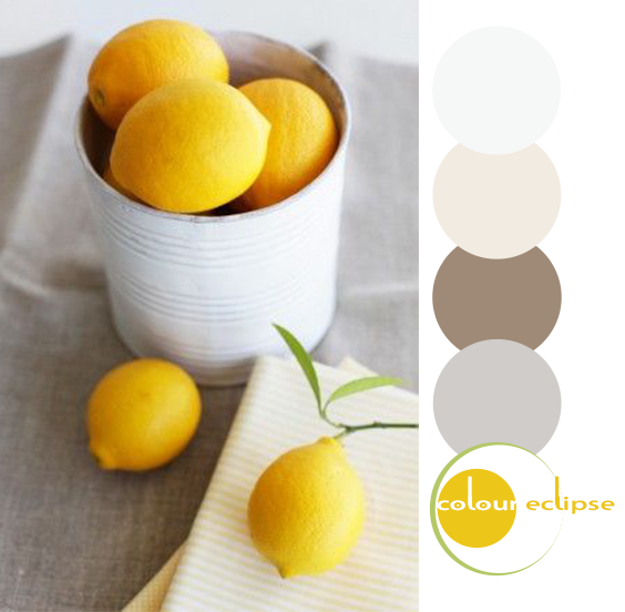 white gray and bright lemon yellow color palette