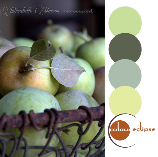 basket of green apples with matching color palette