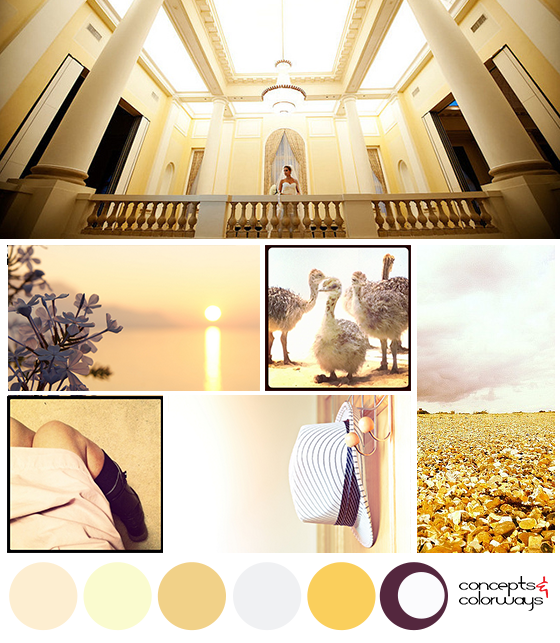 tempting warmth mood board with color palette