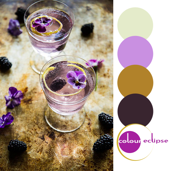 blackberry french 75's with color palette