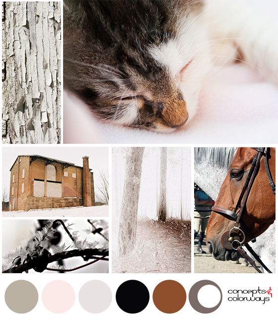 gray and brown color palette