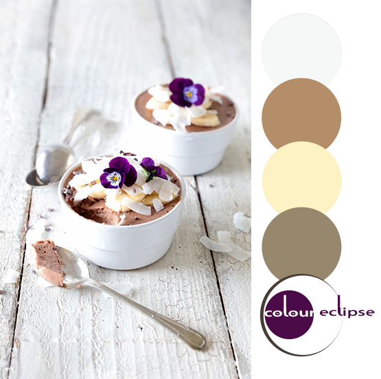 coconut banana chocolate mousse inspired color palette