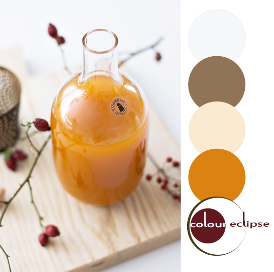 pumpkin spice syrup inspired color palette