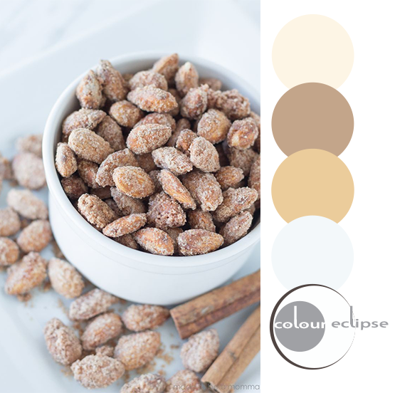 cinnamon sugared almonds inspired color palette