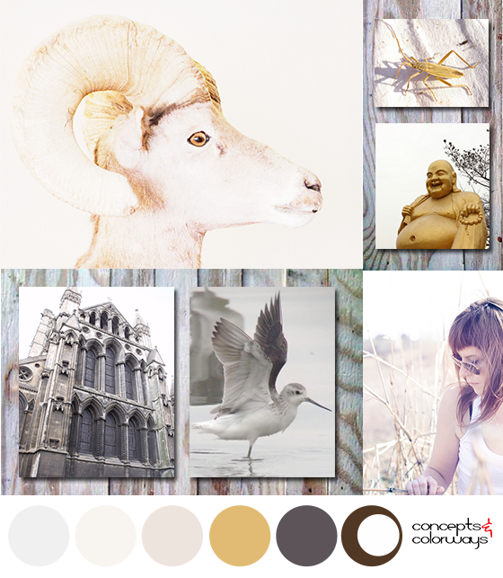 gray and gold color palette with mood board