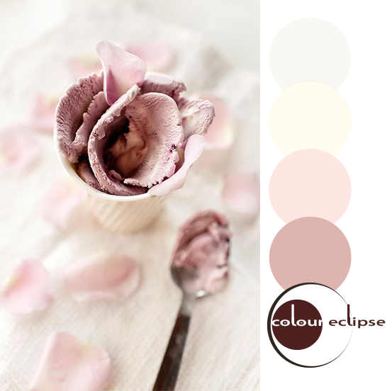 cherry rose ice cream with color palette