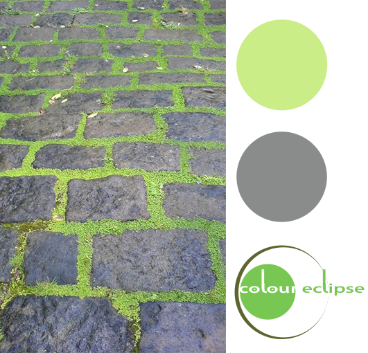 gray cobblestone bright green moss color palette