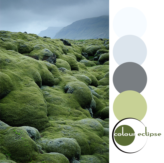 mossy lava fields with color palette