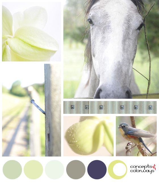 spring color inspiration mood board