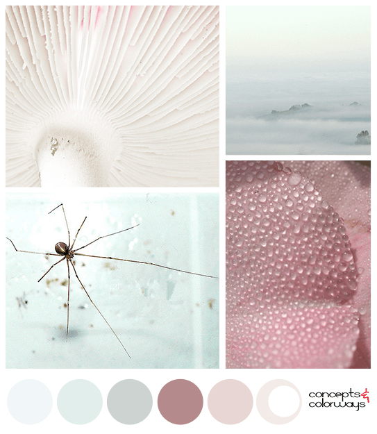 mint green and rose pink color palette mood board