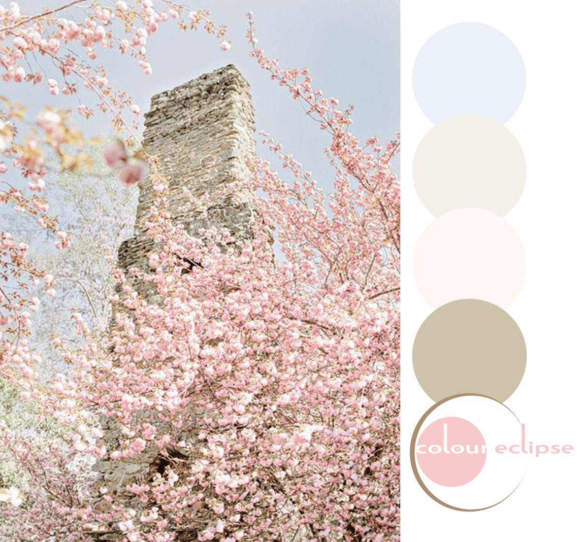 rose quartz and serenity color palette