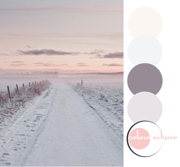 hints of rose color palette