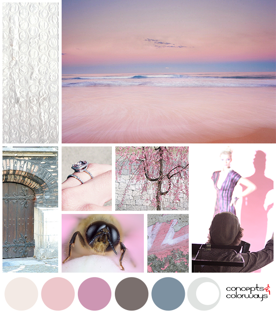 rose beauty color palette mood board