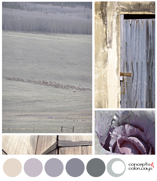 blonde yellow hazy purple gray-green color palette