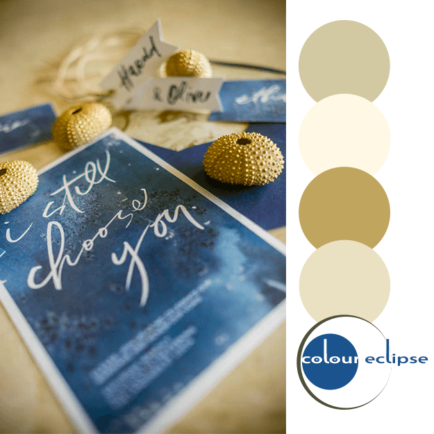 marine blue and tan color palette
