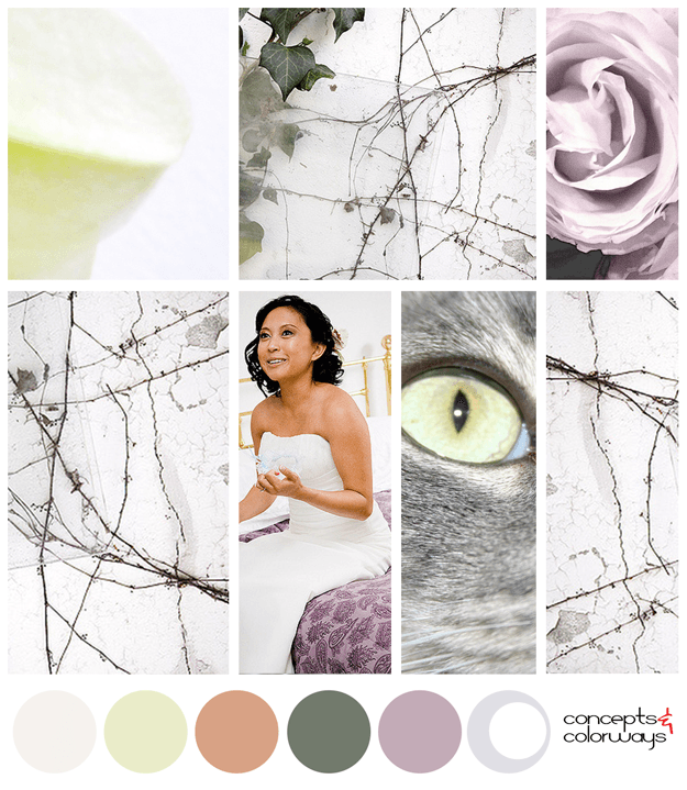 colorful moments color palette mood board