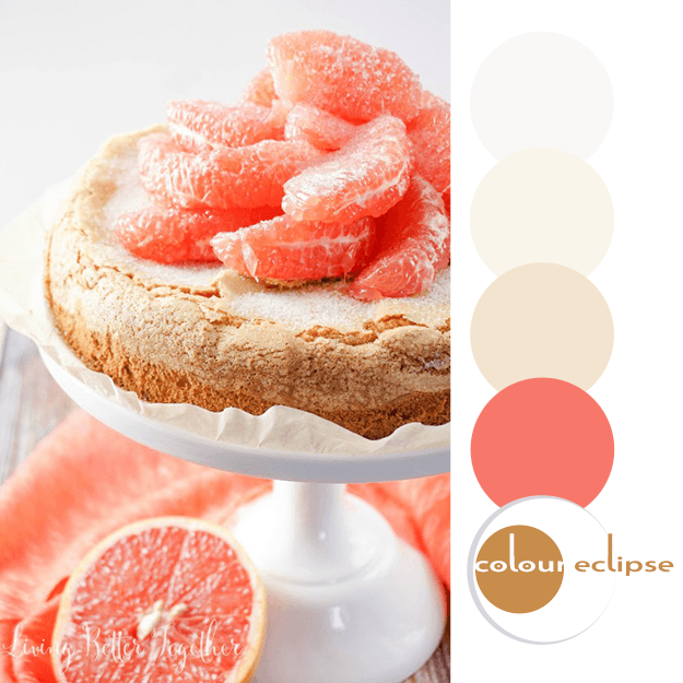 grapefruit olive oil cake with color palette