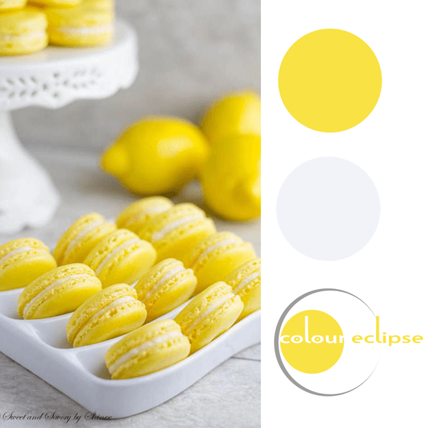 lemon yellow and gray color palette
