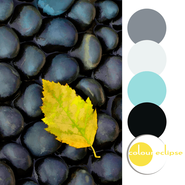 turquoise black yellow gray color palette