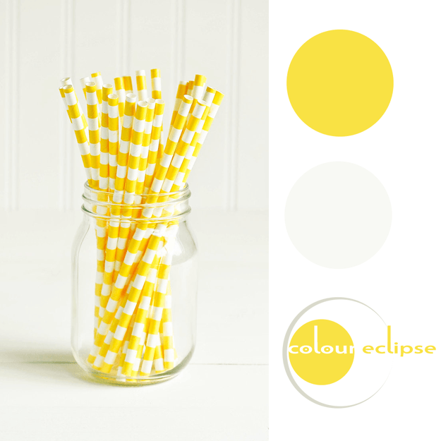 bright yellow and warm white color palette