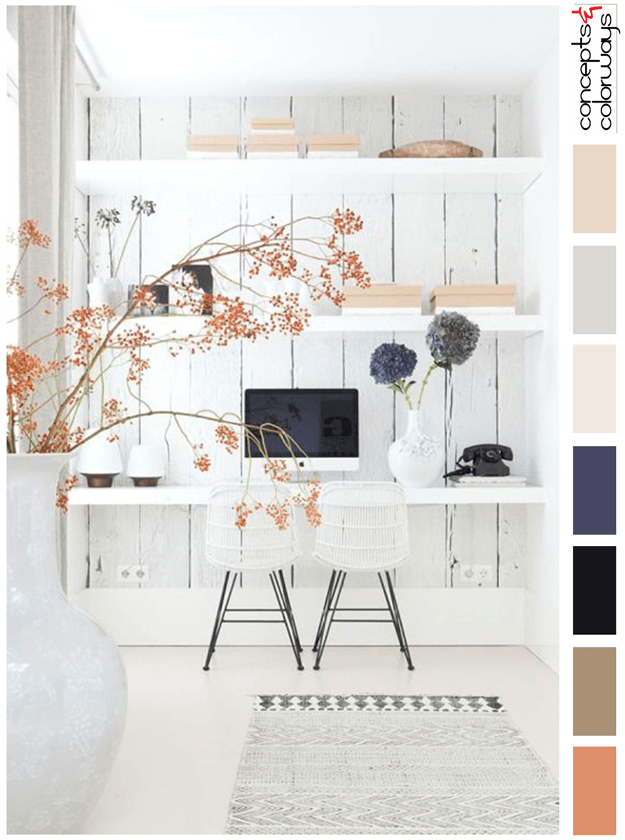 minimal white interior color palette