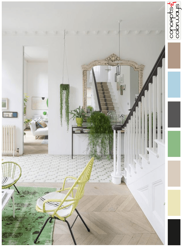 eclectic traditions interior color palette