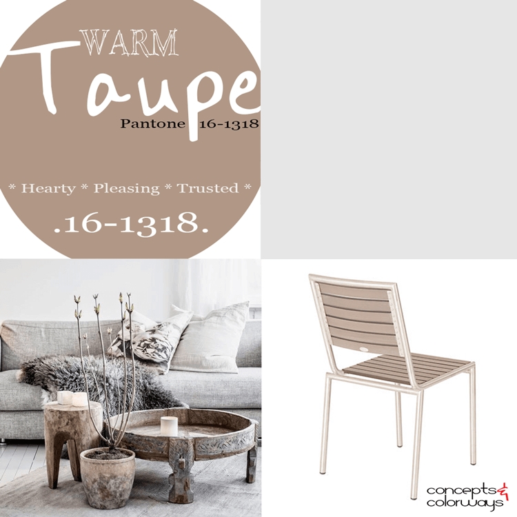 pantone warm taupe, taupe brown, taupe interiors, 2016 color trends