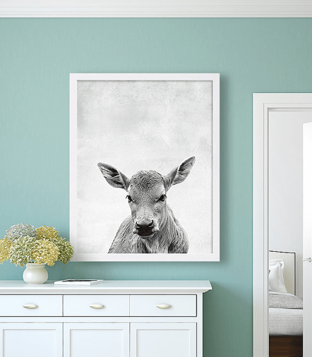 black and white cow print on teal wall