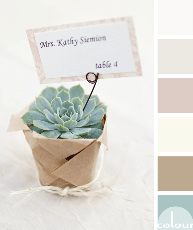 succulent inspired color palette