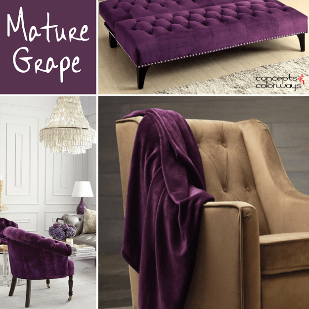 sherwin williams mature grape used in interior design