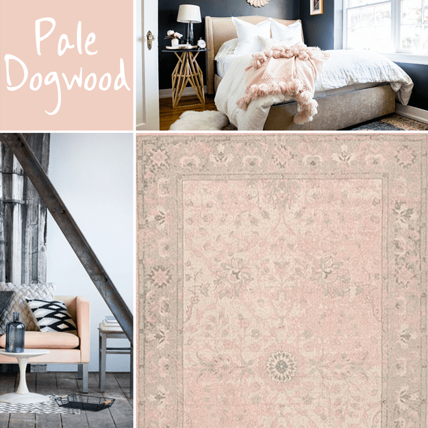 pantone pale dogwood interior design
