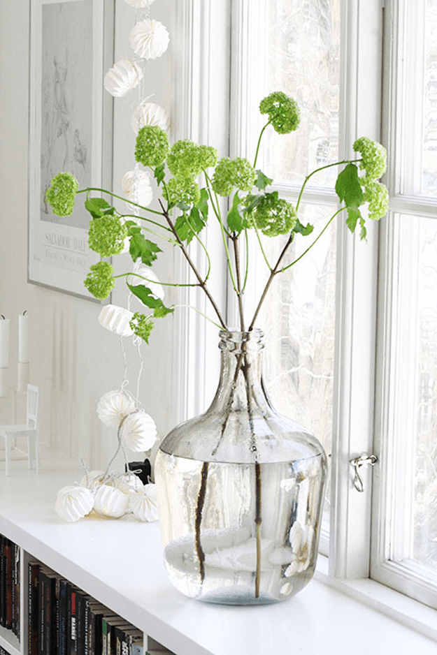 bright green flowers in white window sill