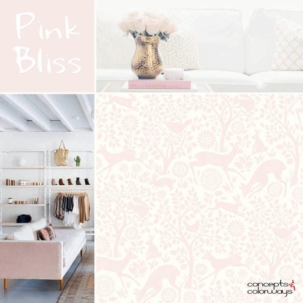 Benjamin Moore Pink Bliss Concepts And Colorways