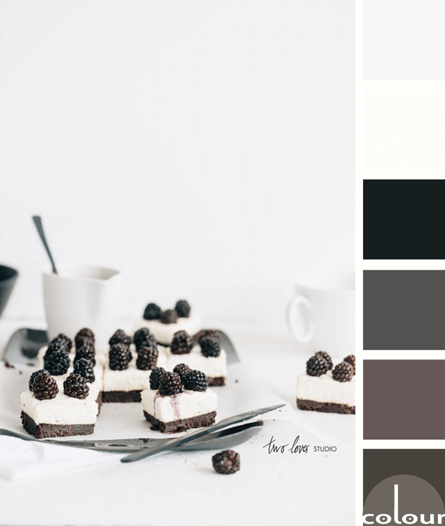 black and white color palette