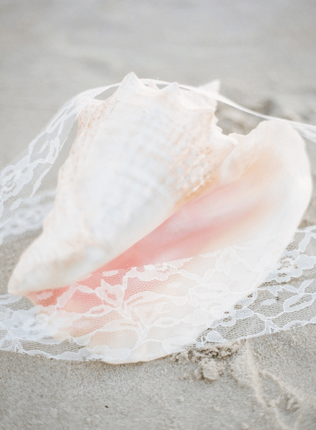 light pink sea shell on sand