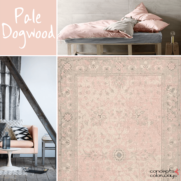 dusty pink bedding in taupe gray room